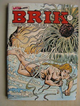 BRIK N°177 FISHBOY (Petit poisson deviendra grand) LE CORSAIRE DE FER