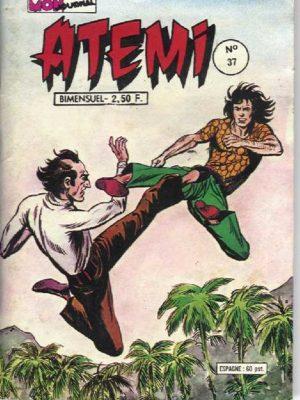 ATEMI (Mon Journal) N°37 Tsé-Khan – Le test